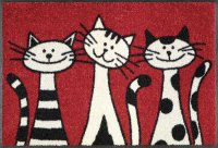 1238_p_tappetino_three_cats_50x75cm.jpg