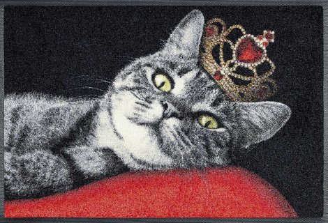 1229_p_tappetino_royal_cat_50x75cm.jpg