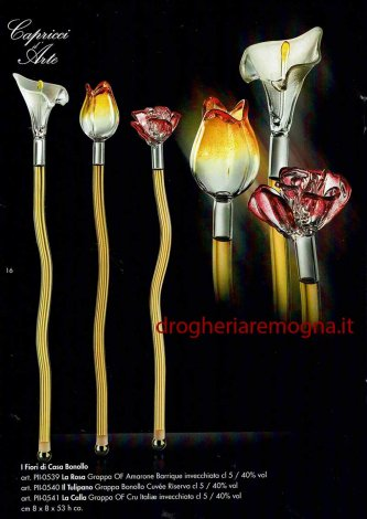 1465_p_fiori_bonollo.jpg
