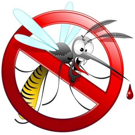 9_c_sezione_insetticidi_drogheria.jpg